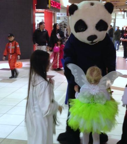 CC Panda 1